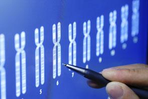 Персонална медицина спрямо гените