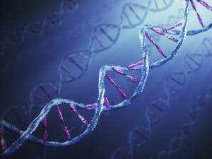 Как средата на родителите ви може да се отрази на вашата ДНК