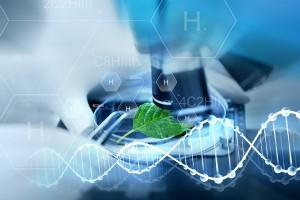 Идеалният хранителен режим се крие в гените ни