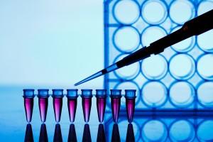 Как да се възползваме от генетичния си потенциал?